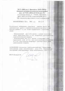 volokitina_res_061213